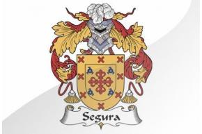 SEGURA O SEGURO