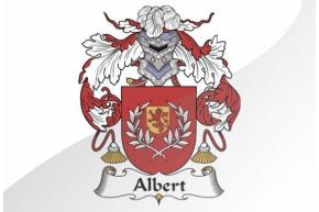ALBERT o ALBERTÍN