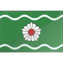 Jogeva parish