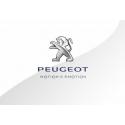 Peugeot vertical_3