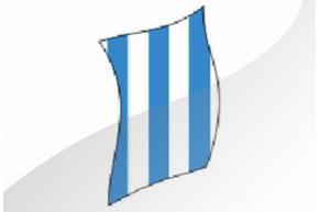R.c.d.espanyol bobina