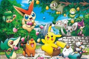 POKEMON GRUP