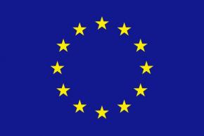 UNION EUROPEA RASO ESTAMPADO