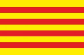 Catalunya ras estampat