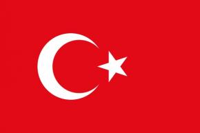 Turquia brodada (sb)
