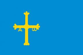 Asturias raso estampado
