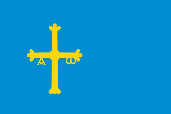 Asturies ras estampat