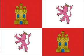 Castella i Lleó ras estampat