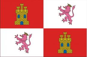 Castilla y León raso estampado