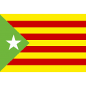 Outlet Estelada Verde-100 x70-anillas