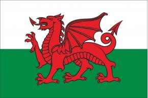 Outlet País de Gales 100 x 70-anillas