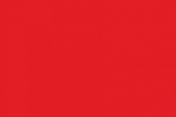 Red flag (Bathing prohibited).