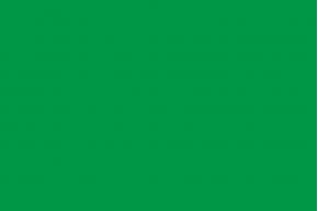 Green flag (authorized bathroom)