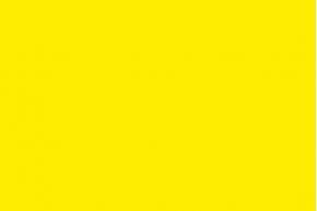 Yellow flag (Caution)