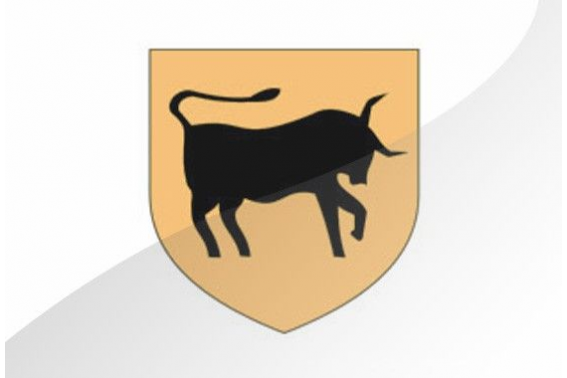 CARHAIX-PLOUGUER