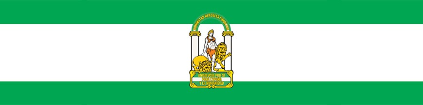 Buy Flags of Andalusia